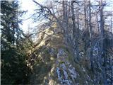 Veliki RogatecVzhodni greben po katerem sem prilezel na vrh