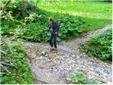 Polhograjska GrmadaPrečenje potoka