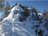 Strelovecvzhodni del grebena - tu sem prišel gor