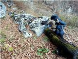 Briceljkpri tem koritu z vodo pod lovsko kočo zavijemo v levo navzgor v gozd in poiščemo stezico