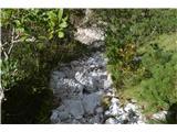 Slovenski slapovi vodotokov Tu so vsi posnetki tega lepega kotička v soteski Dragi. Naj slikce govorijo same .S poti se tu spustimo v strugo.