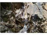 Slovenski slapovi vodotokov To je celoten niz slapov. S poti niso dobro vidni,treba se je podati v strugo in malo poplezati ob strugi.