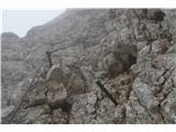 Kalški grebenNato zagledamo jeklenico.