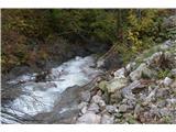 Slovenski slapovi vodotokov Rečica si je izdolbla prehode prek skalovja in dela brzice, manjša korita in prijetne tolmunčke.