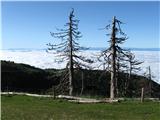Kalški grebenMeglena ljubljanska kotlina,kot pozimi