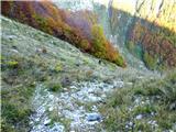Briceljksestop proti lovski koči nad planino Bala