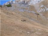 Creta di Rio Secco (2203)niso se pustili motiti