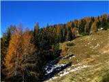Čisti vrhČudovita jesen...:-)