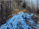 Kojca (1303m)nekaj snega se je obdržalo