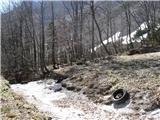ZelenicaV sicer urejenem hudourniku, ki pelje čez smučišče