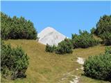 Kalški grebenPrvi pogled na Grintovec