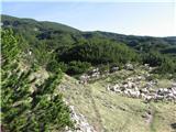 Kalški grebenTrop avac nad planino