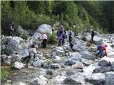 Čisti vrhkratek počitek pri Suhem potoku, ki kmalu ponikne