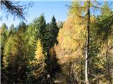 Čisti vrhpa le prihaja počasi jesen in z njo barve