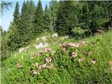 Planina Za Skalo in Kaluderna začetku Travniške doline