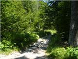 Goli vrh  1787 mnmPot je dobro označena