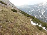 Veliki vrh, DleskovecPot