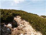 DobračIzstop na greben