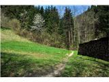 Polhograjska GrmadaPreko travnika v gozd