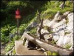 Kranjska koča na Ledinah mountain hut
