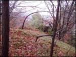 Veliki hrib