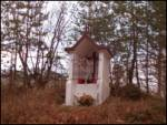 Poljana (Završnica) - potoska_planina
