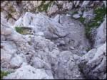 Možnica - Jerebica