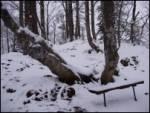 Potoče - potoska_gora