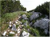 Globasnica / Globasnitz - koncnikov_vrh