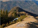 Kunšperski vrh (Brezovec)