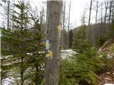 Leše - Koča na Naravskih ledinah