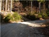 Podljubelj (Lajb) - tomceva_koca_na_poljski_planini