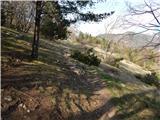 Babni Vrt - baseljski_vrh