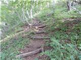18. serpentina ceste na Strmo Reber - firstov_rep
