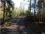 Selski most - gozdarska_koca_na_babi