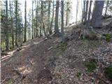 zatrnik - Turn (nad Bohinjsko Belo)