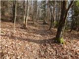 trzic - Zavetišče v Gozdu mountain hut