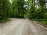 Olševek - Štefanja gora