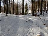 Rovte - sveti_primoz_in_felicijan_jamnik
