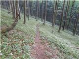 Potoče - Srednji vrh