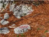 Sviščaki - sneznik