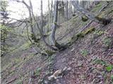 Bučan - Planina Korošica