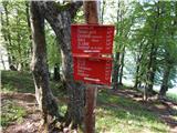 Spodnja Kokra - mali_grintovec