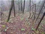 Kokra (počivališče Kokra-sotočje) - kopa_partizanski_vrh