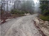 Travnarjev gozd (Hotenjsko podolje) - sencurjev_vrh