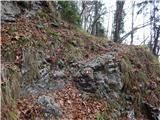 Molnarjev breg - Kamniški vrh