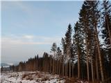 Povlje - mala_poljana