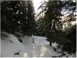 medvedova_konta - Debela peč