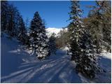 Slatna - sentanski_vrh
