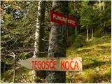Pod Krnico - planina_ilovica